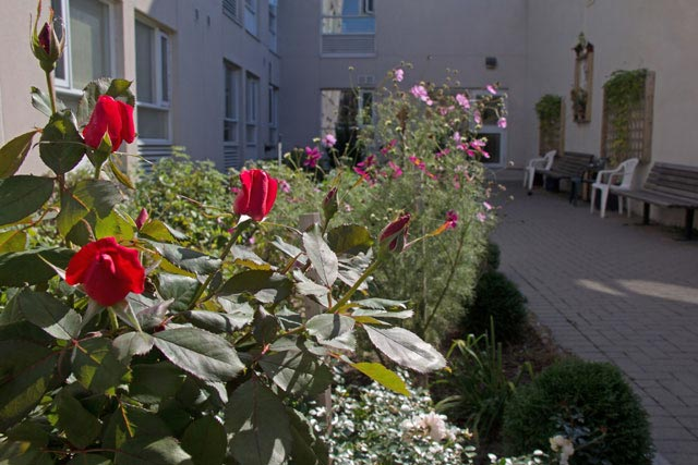Residents can relax or garden in the peaceful courtyard at Community Link House.